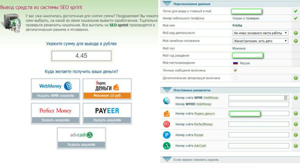 Платёжные системы на SEO sprint